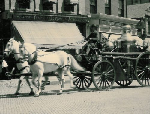 1885-1915: The Horses of the Stamford Department